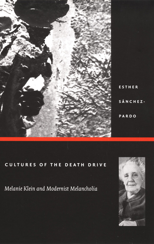 Cultures of the Death Drive
