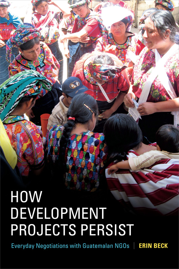 How Development Projects Persist