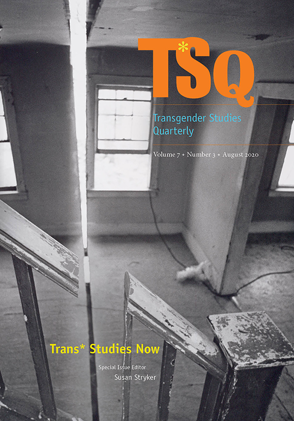 Trans* Studies Now - New